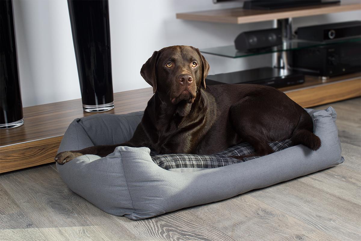 Hundebett modern grau, 100x70 cm mit Wendekissen