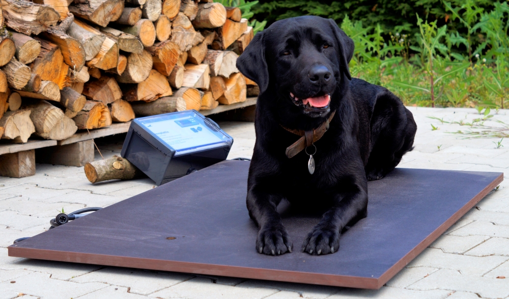 Wärmeplatte Plus für SAUERLAND Hundehütten, stufenlose Steuerung