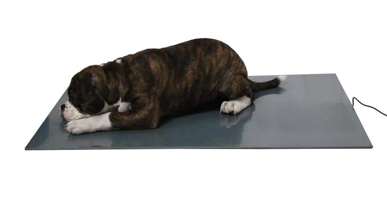 Wärmeplatte / Heizmatte für Hunde, elektrisch beheizte Unterlage