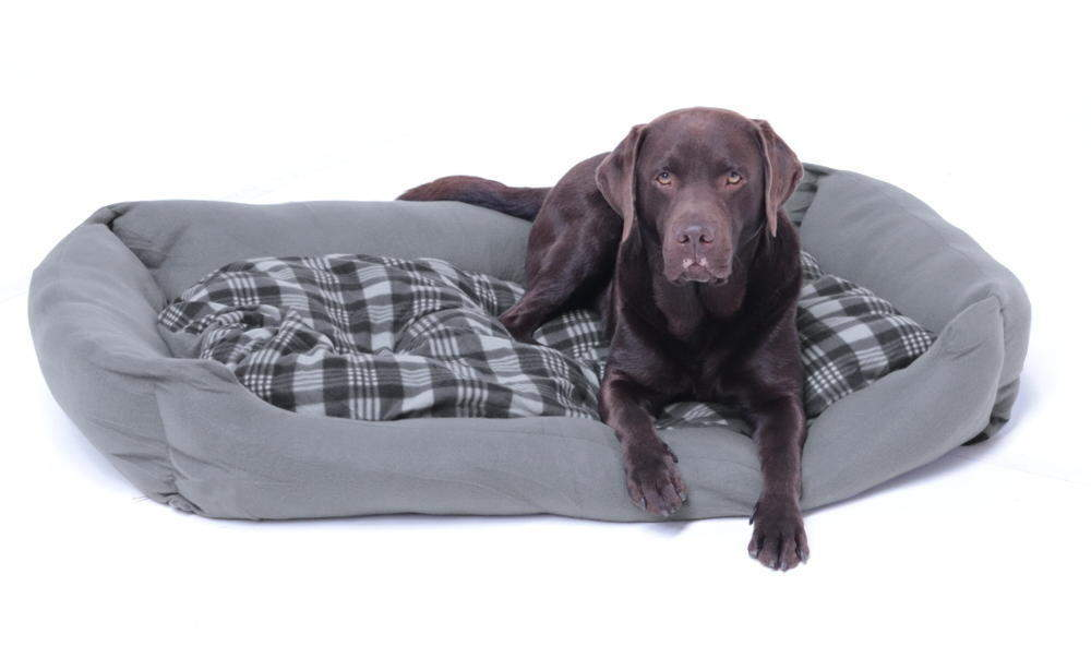 XXXL Hundebett / Hundekissen grau, 120x80 cm mit Wendekissen
