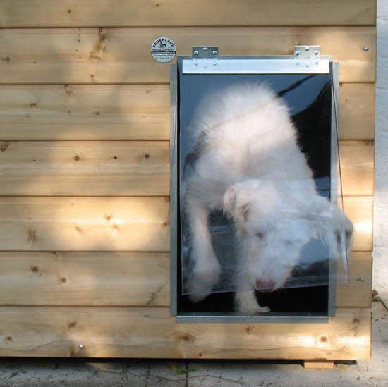 Pendelklappe für SAUERLAND Holz-Hundehütten