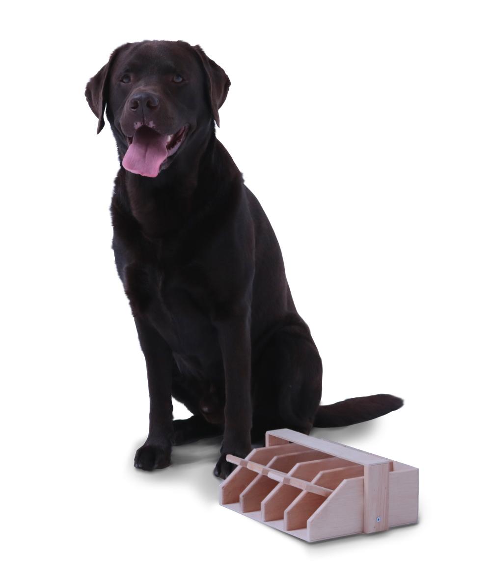 Intelligenzspiel Hundeklavier, Holz-Hundespielzeug