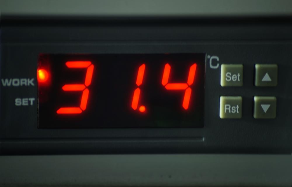 Wärmeplatte Plus 67 x 105 cm für SAUERLAND Hundehütte bis 70 cm Widerristh. (Innenraum), stufenlose Steuerung